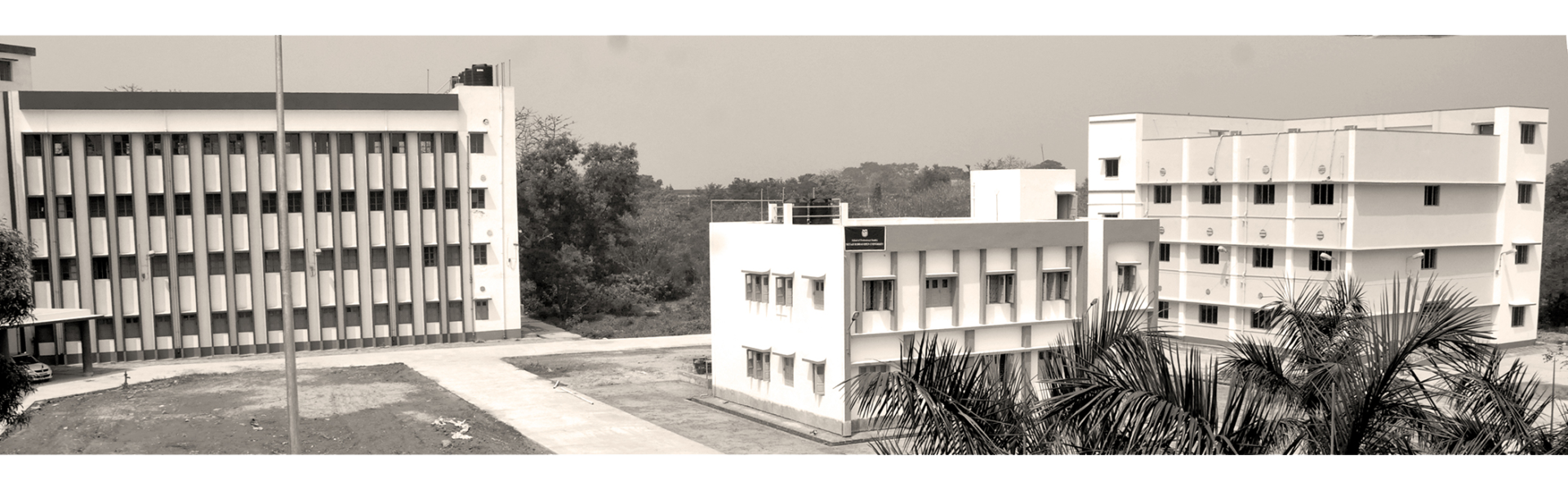 Centre for Language, Translation and Cultural Studies